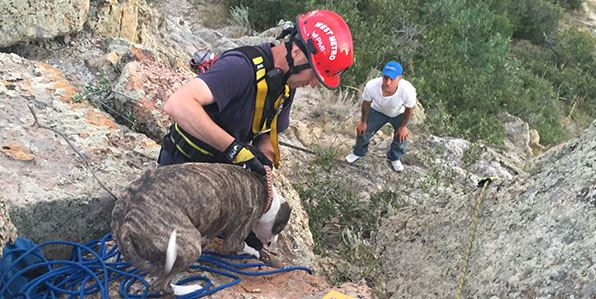 Tech rescue team rescues a dog that has fallen into a deep mine shaft.